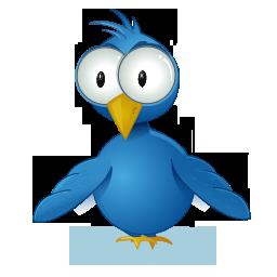 Twitter Bird (Newbie)